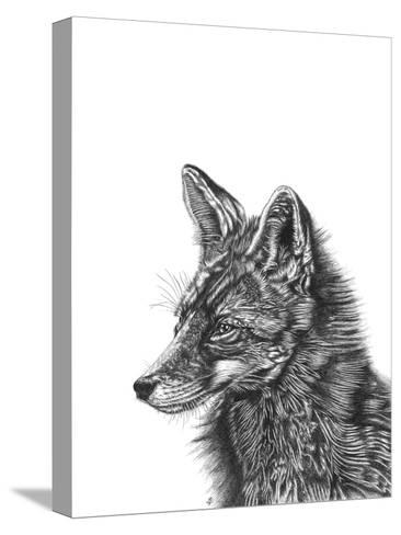 Fox--Stretched Canvas Print