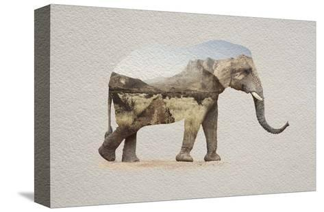 African Elephant Erongo Namibia-Color Me Happy-Stretched Canvas Print