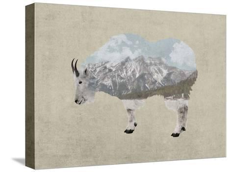 Rocky Mountain Goat-Color Me Happy-Stretched Canvas Print
