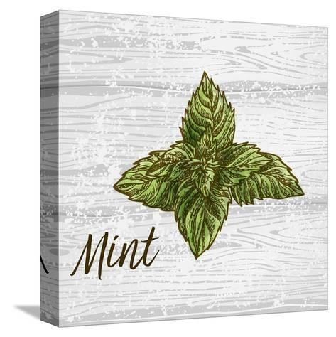 Mint on Wood-Color Me Happy-Stretched Canvas Print