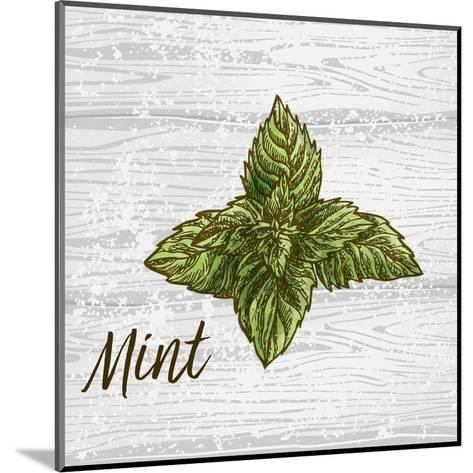 Mint on Wood-Color Me Happy-Mounted Art Print