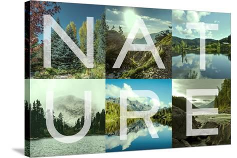 Nature Patch-Marcus Prime-Stretched Canvas Print