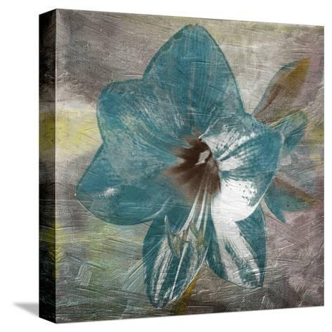 Vibrany Lily-Sheldon Lewis-Stretched Canvas Print