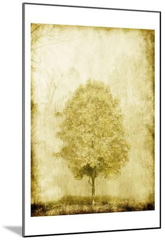 Golden Tree-OnRei-Mounted Art Print