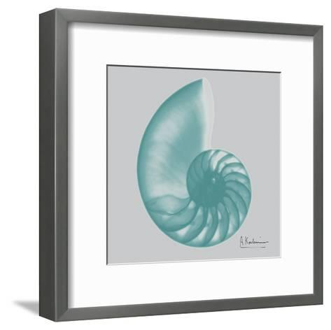 Aquifer Sea Shell-Albert Koetsier-Framed Art Print