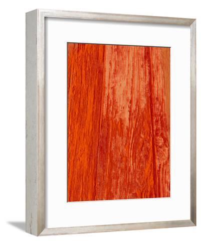 New Age Look-Sheldon Lewis-Framed Art Print