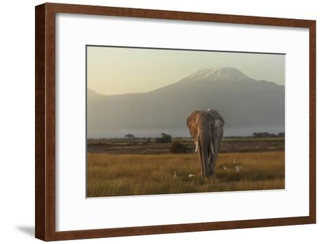 Under The Roof Of Africa-Massimo Mei-Framed Art Print