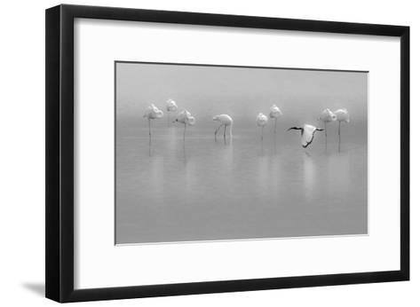 Shades Of Gray-Massimo Mei-Framed Art Print