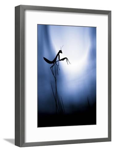 Last Night On Earth-Fabien Bravin-Framed Art Print