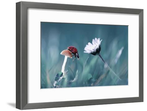 The Story Of The Lady Bug That Tries To Convice The Mushroom To Have A Date With The Beautiful Dais-Fabien Bravin-Framed Art Print