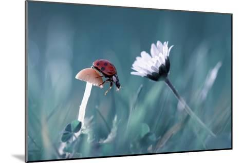 The Story Of The Lady Bug That Tries To Convice The Mushroom To Have A Date With The Beautiful Dais-Fabien Bravin-Mounted Giclee Print