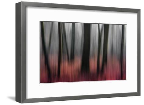 Red Wood-Gilbert Claes-Framed Art Print