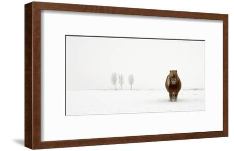 The Cold Pony-Gert Van Den-Framed Art Print