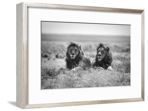 Two Kings-Nicolas Merino-Framed Art Print