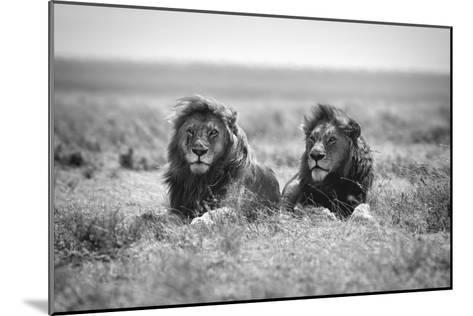 Two Kings-Nicolas Merino-Mounted Giclee Print
