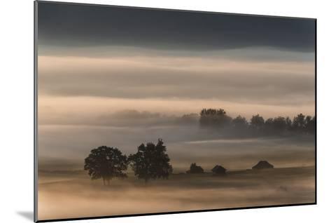 Dense Fog Over The Moos-Nina Pauli-Mounted Giclee Print