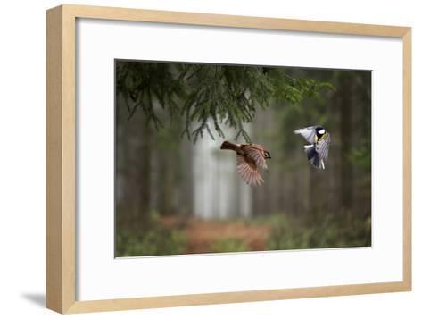 Two-Peter Bognar-Framed Art Print