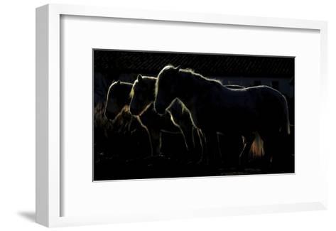 Triplets-Michel Romaggi-Framed Art Print