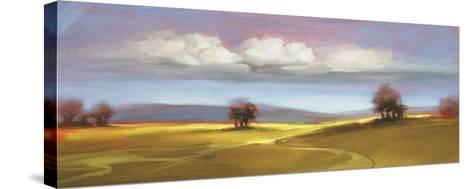 Landscape 106-DAG, Inc-Stretched Canvas Print