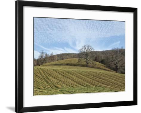Bucolic Scene X-Golie Miamee-Framed Art Print