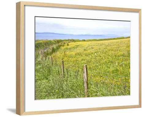 Bucolic Scene XII-Golie Miamee-Framed Art Print