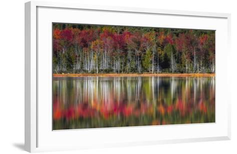 Autumn Reflections-Danny Head-Framed Art Print