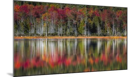 Autumn Reflections-Danny Head-Mounted Giclee Print