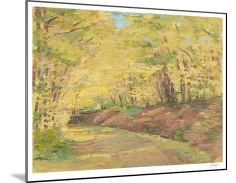 Fall Path II-Ethan Harper-Mounted Limited Edition