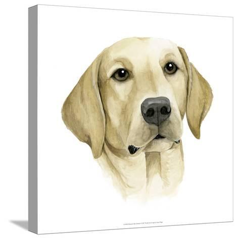 Human's Best Friend I-Grace Popp-Stretched Canvas Print