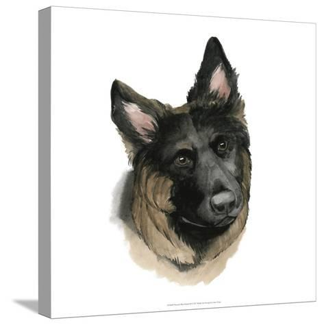 Human's Best Friend II-Grace Popp-Stretched Canvas Print