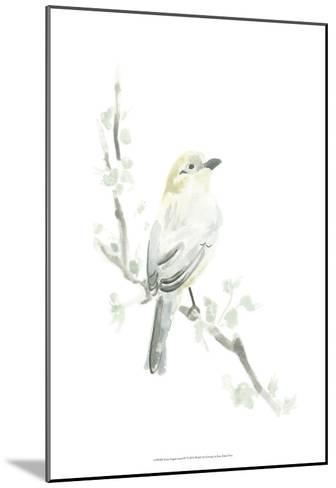 Avian Impressions IV-June Erica Vess-Mounted Art Print