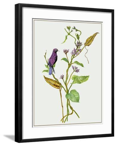 Metaplexis Japonica I-Melissa Wang-Framed Art Print
