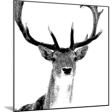 Forest Focus - Deer-Myriam Tebbakha-Mounted Giclee Print