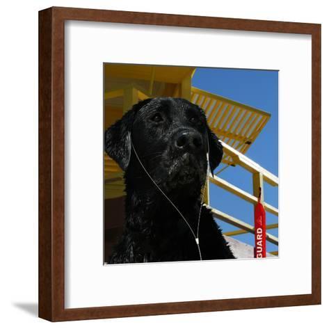 The Dog Of The Bay-Noah Bay-Framed Art Print
