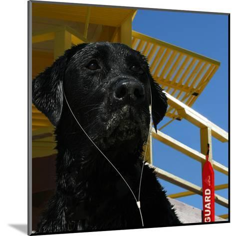 The Dog Of The Bay-Noah Bay-Mounted Art Print