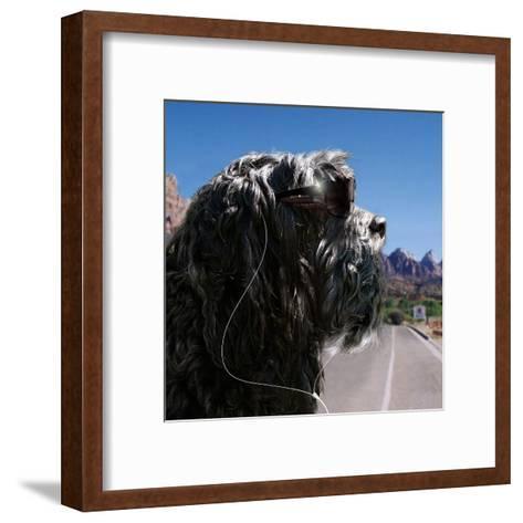 ZZ Dog Final-Noah Bay-Framed Art Print