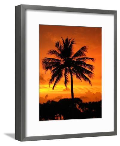 Sunrise with Palm Tree-Wonderful Dream-Framed Art Print