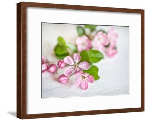 Apple Blossom 2-Lebens Art-Framed Art Print