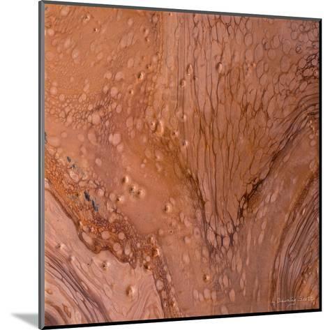 Copper Strata-Lis Dawning Scott-Mounted Art Print