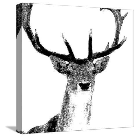 Forest Focus - Deer-Myriam Tebbakha-Stretched Canvas Print