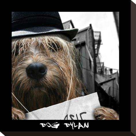 Dog Dylan-Noah Bay-Stretched Canvas Print
