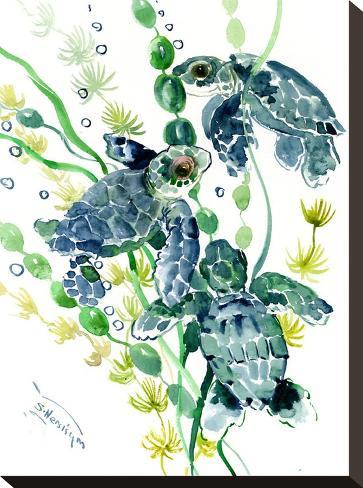 Three Sea Turtles-Suren Nersisyan-Stretched Canvas Print