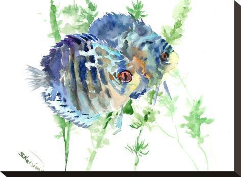 Aquarium Fish-Suren Nersisyan-Stretched Canvas Print