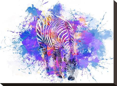 Crazy Zebra-Lebens Art-Stretched Canvas Print