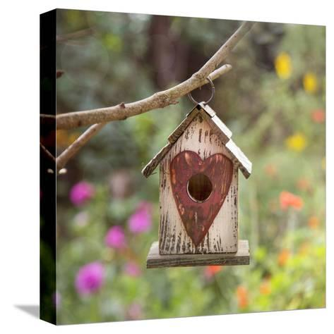 Bird House - Square-Lebens Art-Stretched Canvas Print