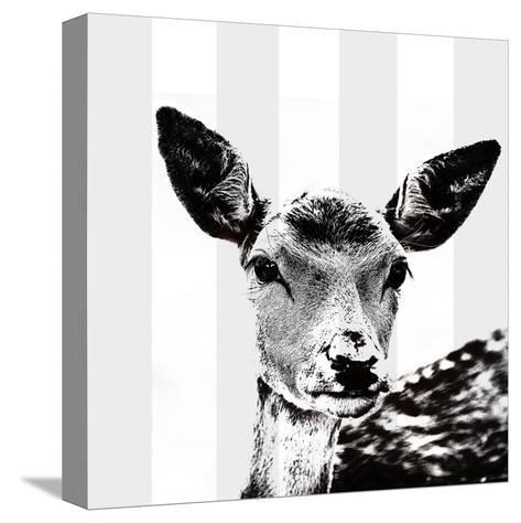 Deer Black And White - Square-Lebens Art-Stretched Canvas Print