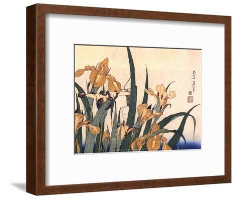 Convolvulus and Tree Frog-Hokusai Hokusai-Framed Art Print