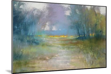 Dappled path-Barbara Newton-Mounted Giclee Print
