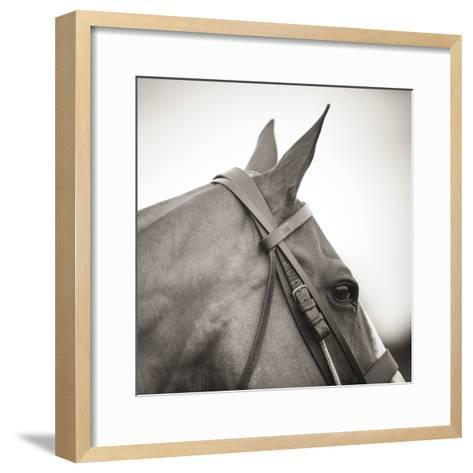 Noble Gaze-Joseph Eta-Framed Art Print