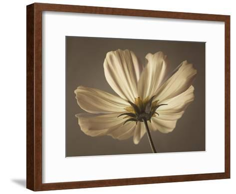 Cosmos Reflect-Assaf Frank-Framed Art Print